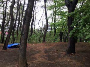 みなとが丘ふ頭公園品川区キャンプ場