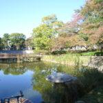 文庫の森公園